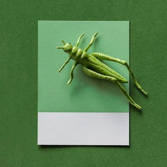 Cavalletta in miniatura colorata su una carta