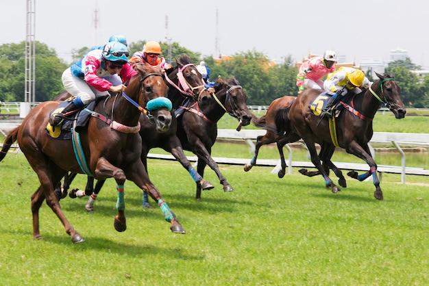 Cavallo da corsa e fantino saltare sopra un ostacolo