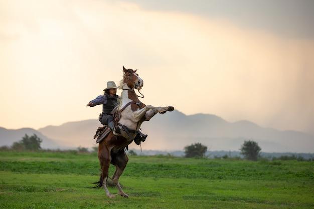 Cavallo da equitazione dell'uomo sul campo durante il tramonto