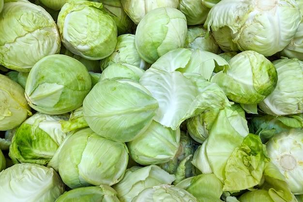 Cavolo verde in scatola, fondo. varietà di cavolo fresco coltivata nel negozio. cibo gustoso e salutare