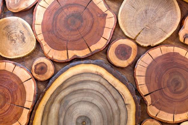 Ceppi screpolati marroni e gialli morbidi ecologici solidi naturali non verniciati rotondi in legno, sezioni tagliate ad albero con anelli annuali di diverse dimensioni e forme, trama.