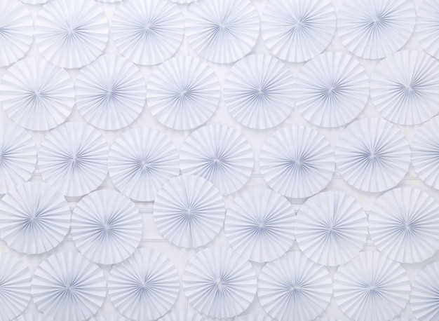 Cerchi bianchi