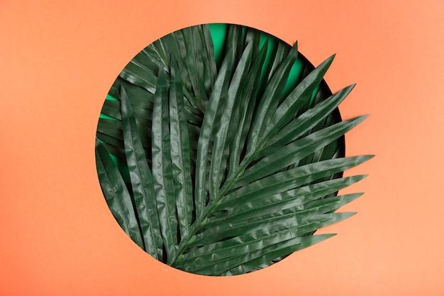 Cerchio di carta con foglia realistica