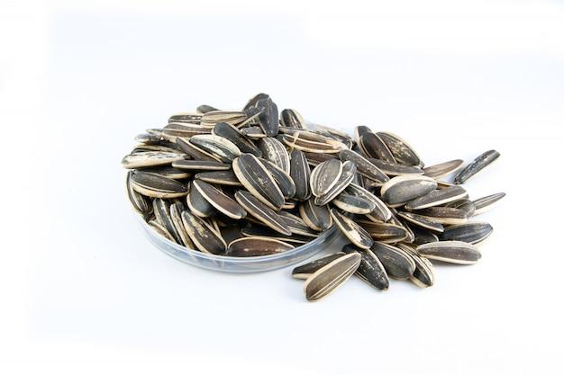 Cerchio di semi di girasole