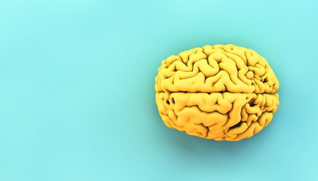 Cervello giallo minimo