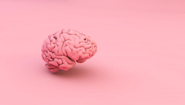 Cervello rosa