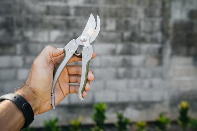 Cesoie in mano di un uomo su un muro di mattoni grigi nel giardino e arbusti di verde. giardinaggio, attrezzo, oggetto.