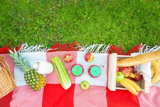 Cestino da picnic, frutta, succo in piccole bottiglie, mele, latte, ananas estate, riposo, plaid, erba copia spazio