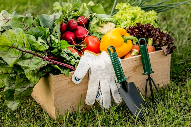Cesto alto angolo con verdure