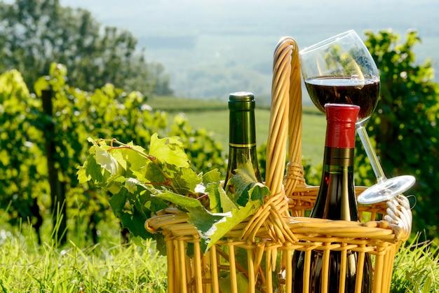 Cesto con bottiglie e bicchiere di vino rosso nei vigneti