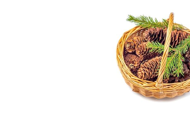 Cesto con coni isolati. natale, vacanze invernali, concetto di nuovo anno. il concetto di fare artigianato dai doni della natura. vista dall'alto