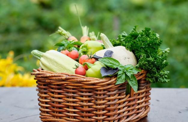 Cesto pieno di raccolta ortaggi biologici e radice in un giardino.