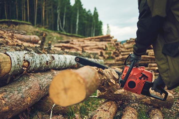 Chainsaw. close-up di sega a catena sega taglialegna in movimento, segatura volare ai lati. il concetto fa cadere gli alberi.