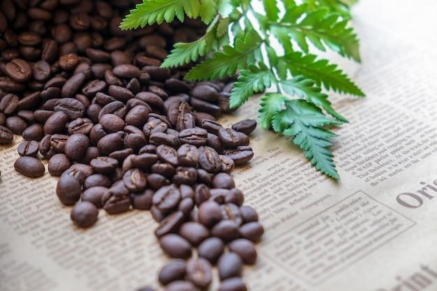 Chicchi di caffè con foglia verde su illuminazione del sole del giornale. immagine per sfondo.