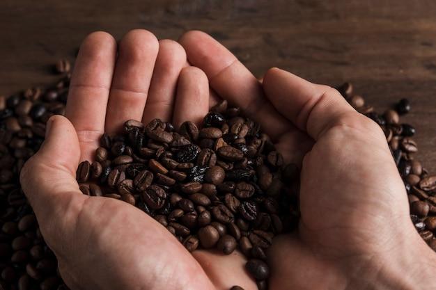 Chicchi di caffè sulle mani