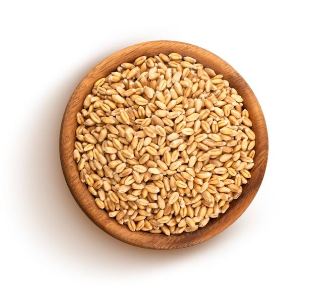 Chicchi di grano isolati su sfondo bianco