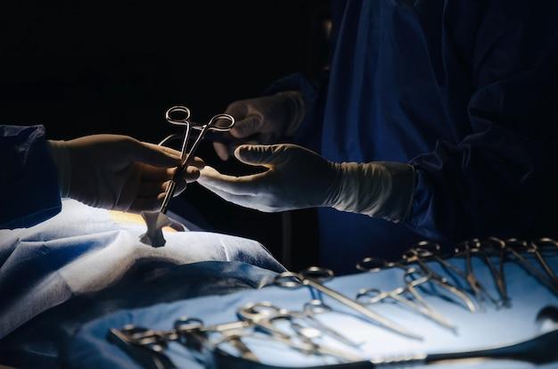 Chirurgo che invia lo strumento chirurgico a disposizione per salvare la stanza in funzione del paziente