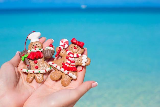 Chiuda in su dei biscotti del pan di zenzero di natale in mani contro il mare del turchese