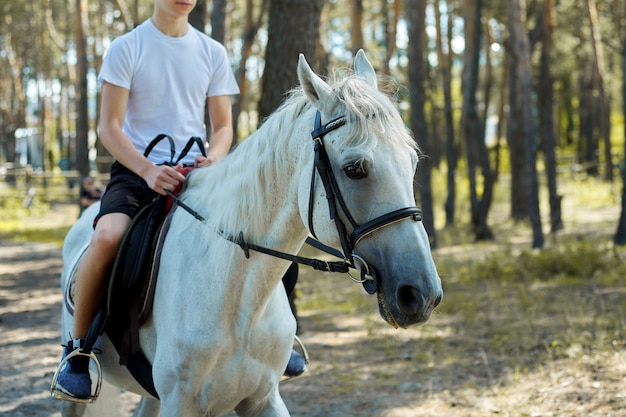 Chiuda in su del cavallo bianco che funziona con il ragazzo adolescente del cavaliere