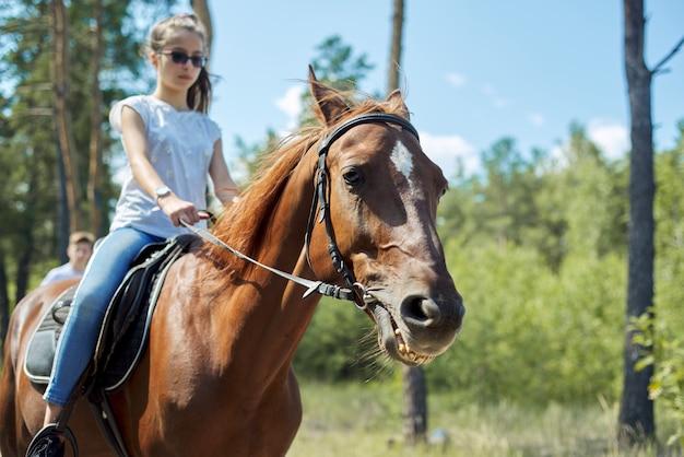 Chiuda in su del cavallo marrone che funziona con la ragazza adolescente del cavaliere