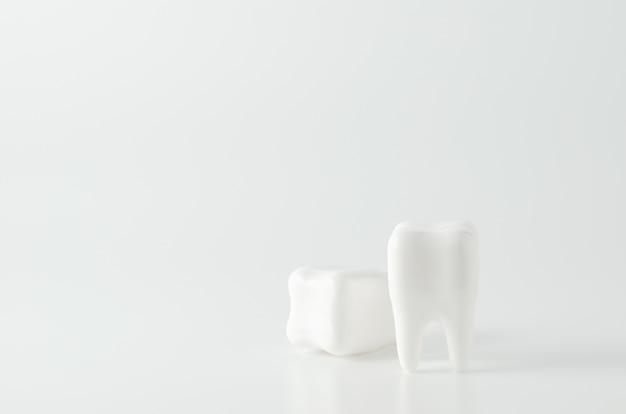 Chiuda in su del modello dentale dei denti bianchi su priorità bassa bianca