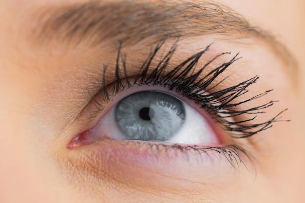 Chiuda in su dell'occhio azzurro femminile