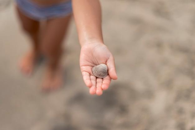 Chiuda in su della mano del bambino che mostra una conchiglia