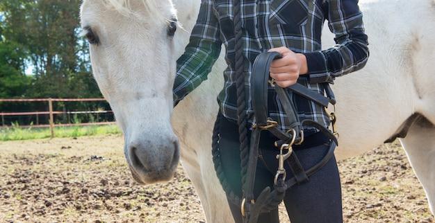 Chiuda in su di giovane donna del cavaliere con il cavallo bianco