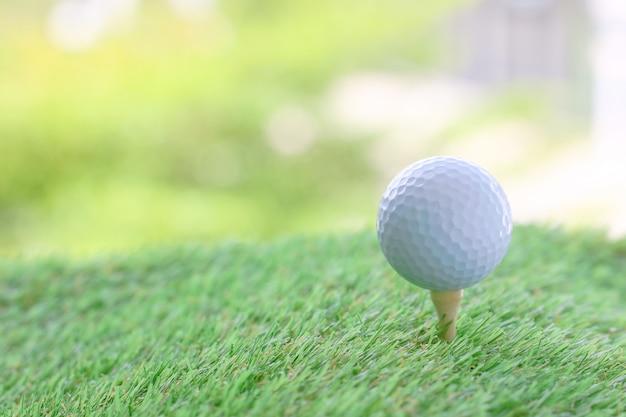 Chiuda in su di sfera di golf sul t