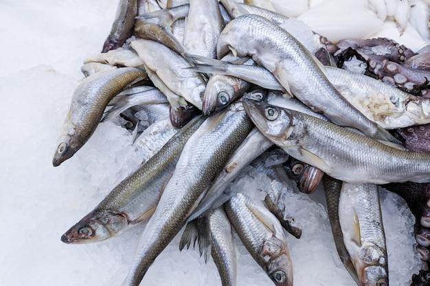 Chiuda in su, spratto organico fresco dei pesci su ghiaccio sul mercato di prodotti freschi