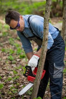 Chiuda su boscaiolo in uniforme da lavoro che sega il giovane tronco di albero con la motosega