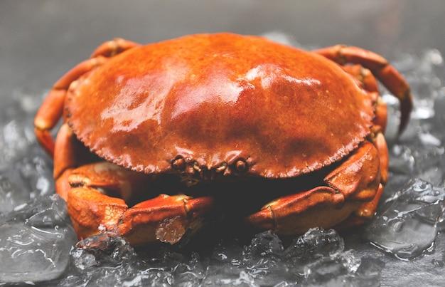 Chiuda su del granchio di pietra cotto a vapore nel ristorante dei frutti di mare