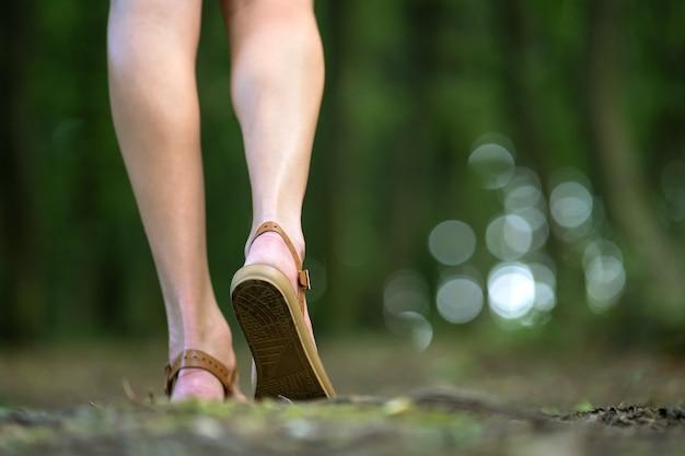 Chiuda su delle gambe esili nude della giovane donna che camminano all'aperto nella foresta verde dell'estate.