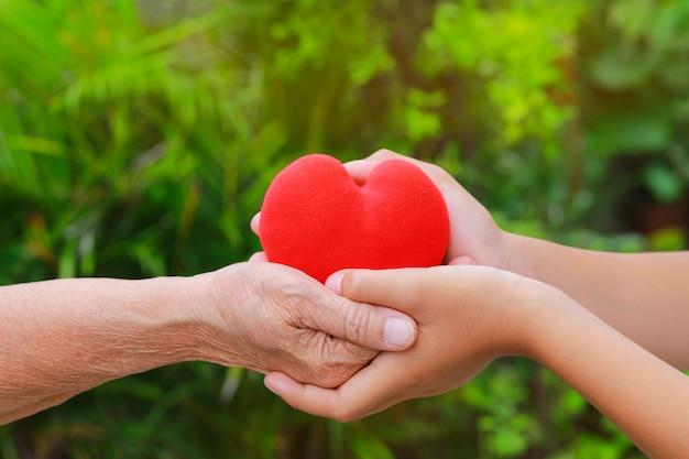 Chiuda su di vecchie e giovani mani che tengono il cuore rosso con il fondo verde della natura