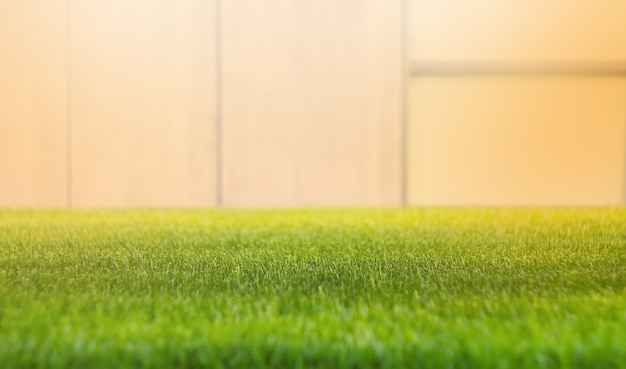 Chiuda sul campo di erba verde con il fondo della parete della sfuocatura.