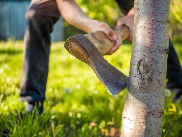 Chiuda sul colpo dell'ascia nella mano dell'uomo che lavora nel giardino