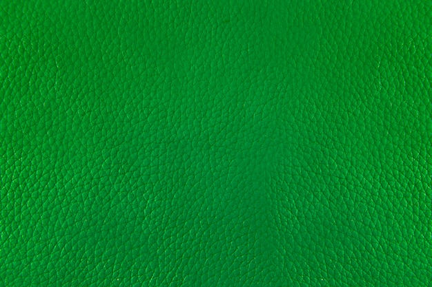 Chiuda sul cuoio verde e sul fondo di struttura