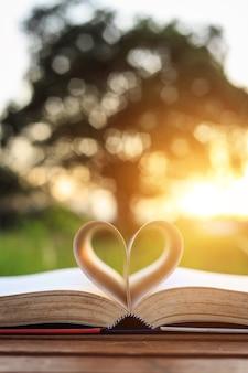 Chiuda sul libro sulla tabella nel tempo del tramonto