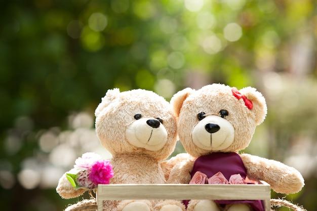 Chiuda sul orsacchiotto adorabile di marrone due nel concetto della scatola di legno