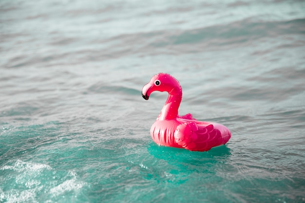 Chiuda sull'anello gonfiabile di nuotata del fenicottero su acqua