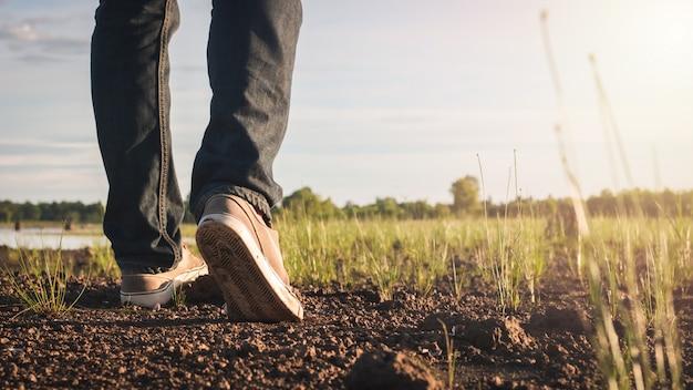 Chiuda sull'immagine dei jeans e della scarpa da tennis degli uomini che camminano alla natura della campagna