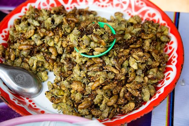 Chiuda sulla cicala della larva nel mercato a chiang mai thailand