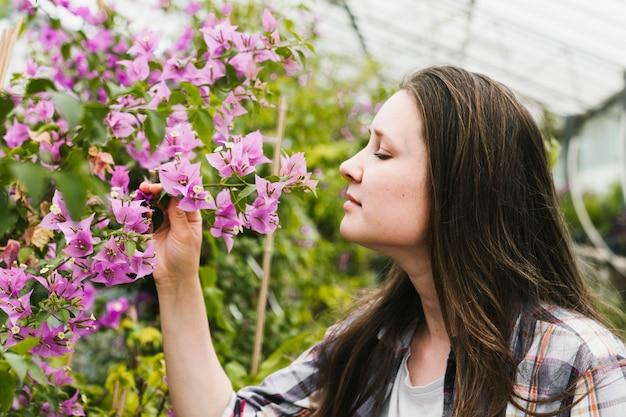 Chiuda sulla donna che sente l'odore dei fiori