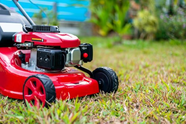 Chiuda sulla falciatrice da giardino nel parco sull'erba