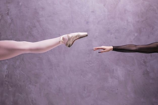 Chiuda sulla gamba e sul braccio della ballerina