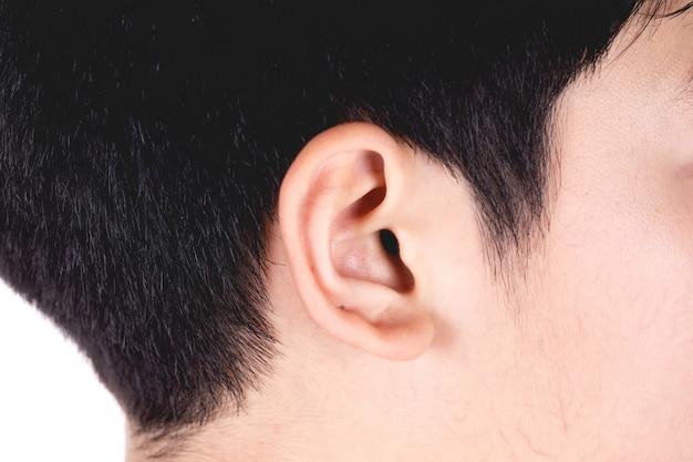 Chiuda sulla testa del fuoco asiatico dei capelli neri del ragazzo sulla testa del lato destro dell'orecchio isolata su bianco.