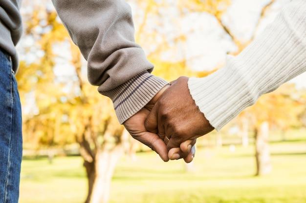 Chiuda sulla vista di tenersi per mano delle coppie senior