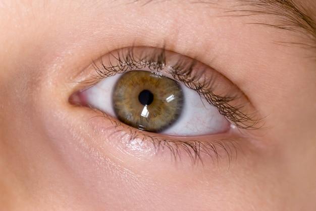 Chiuda sulla vista di un occhio verde della ragazza. fotografia macro