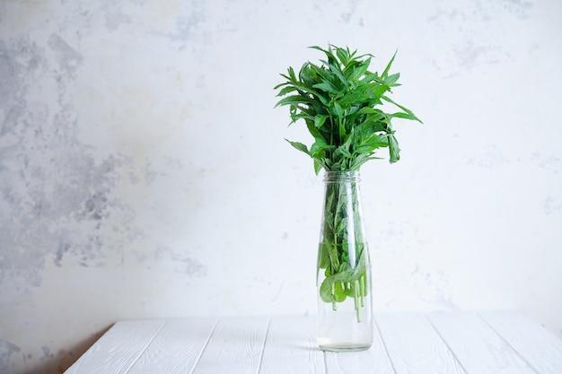 Chiuda sulla vista sul mazzo di menta in una bottiglia del vaso con lo spazio della copia. concetto di fresco, estate e minimalismo. interni scandinavi. erbe fresche su sfondo bianco di cemento