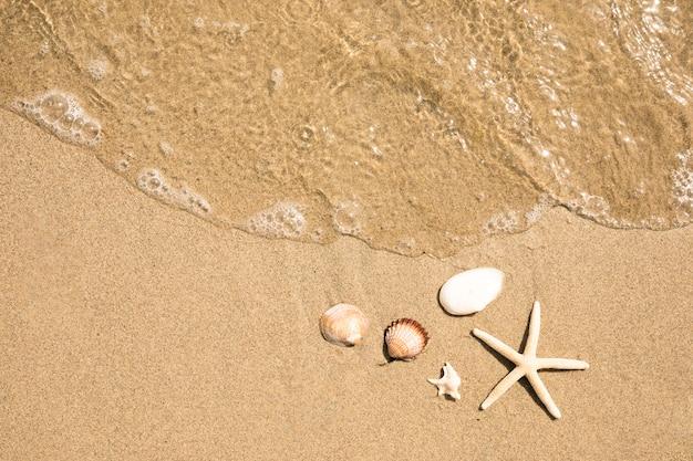 Chiuda sulla vista superiore di acqua sulla spiaggia sabbiosa tropicale